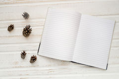 Open notebook with blank pages, next to pine cones over wooden t Stock Images