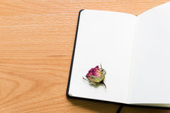 Open Notebook With Dry Rose On Wooden Table With Copy Space Royalty Free Stock Image