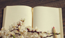 Open notebook with empty pages and  blossoming apricot branch Royalty Free Stock Photography