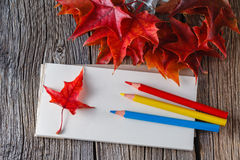 Open notebook. Fall on leaves on weathered table Stock Photos