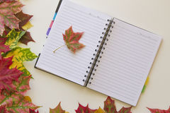 Open notebook, framed with autumn leaves on white background. Flat lay. Top view. Empty copy space for text Stock Images