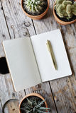Open notebook with golden pen framed by various cacti Stock Photos