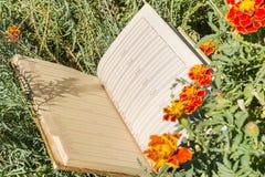 Open notebook on green grass Stock Photos