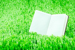 Open notebook on green grass, Business and Education concept tem Royalty Free Stock Photo