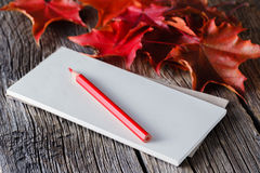 Open notebook and pen in autumn ambient Stock Photography