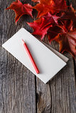 Open notebook and pen in fall background Royalty Free Stock Photos