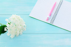 Open notebook with pink pen, coffeecup and hydrangea. On mint wooden background. Copy space background Stock Image