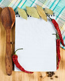 Open notebook with spices Royalty Free Stock Image