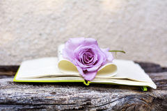 Open Notepad with pink rose on a wooden background stock image