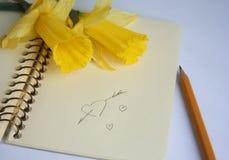 Open notitieboekje met een tekening van hart en een gele narcis Stock Afbeelding