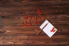 Open notitieboekje, potlood en rode ashberry op het textuur oude hout Royalty-vrije Stock Fotografie