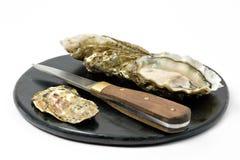 Open oesters stock afbeeldingen
