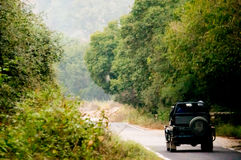 Open off road cars on a jungle path Royalty Free Stock Photo