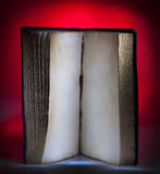 Open old book Stock Photography