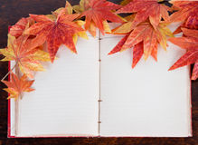 Open old book and Artificial autumn maple leafs. Royalty Free Stock Image