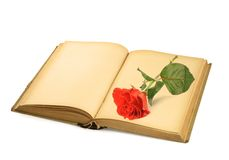 Open old book with rose Stock Photos