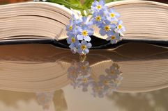 Open old, thick book with blue flowers. Stock Photo