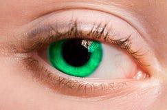Open oog Stock Foto's