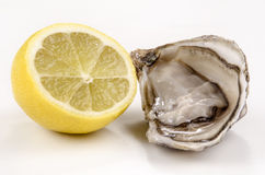 Open oyster and half lemon Royalty Free Stock Image