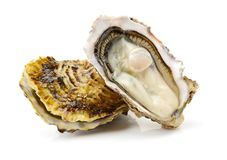 Free Open Oysters Royalty Free Stock Images - 105861769
