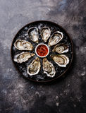 Open Oysters on ice. In plate with sauce on dark texture background copy space Royalty Free Stock Photos