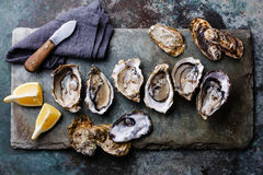 Open Oysters with lemon Royalty Free Stock Photography