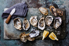 Open Oysters with lemon Stock Photography