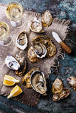 Open Oysters with lemon and wine Royalty Free Stock Photos