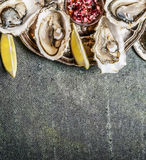 Open Oysters in plate with lemon and shallots sauce on rustic background, top view Stock Image