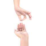 Open palm hand gesture Royalty Free Stock Photo