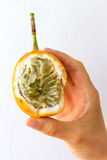 Open Passion Fruit in Hand. An open passion fruit held in the hand of a young woman, isolated on white Stock Photos