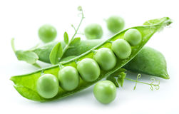 Open pea pod. Royalty Free Stock Image