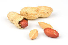 Open peanuts Stock Photography