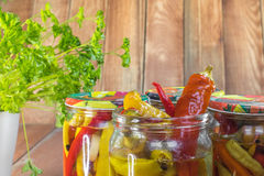 Open Pickled Chilli Peppers in Glass Jar with Parsley Royalty Free Stock Photography