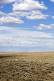 The Open Plains Stock Image