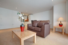 Open plan apartment Royalty Free Stock Photography
