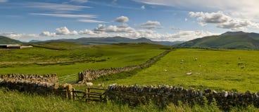 Open platteland Royalty-vrije Stock Afbeeldingen