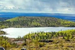 Open plekken van polair gebied in de lente royalty-vrije stock fotografie