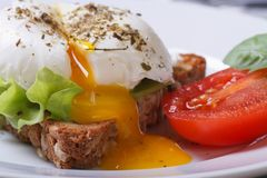 Open poached egg, tomato and bread Stock Images