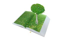 Open pop up book with real tree and green grass field theme isol Royalty Free Stock Photo
