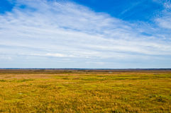 Open Prairie Stock Images