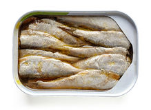 Open può delle sardine isolate su bianco, da sopra fotografia stock