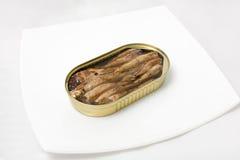 Open puede de pescados en una placa Imagenes de archivo