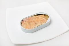 Open puede de pescados en una placa Fotografía de archivo libre de regalías
