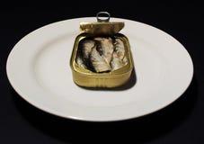 Open puede de sardinas en un fondo aislado Fotografía de archivo libre de regalías