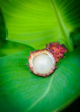 Open rambutan on banana leaf Stock Photo