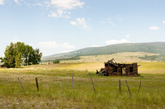 Open Range Land Stock Image