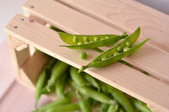 Open, raw, fresh pea pods and pea on wooden, brown box. On foreground Royalty Free Stock Image