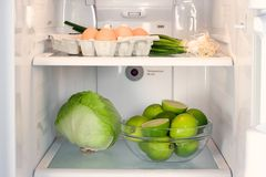 Open refrigerator Royalty Free Stock Photos