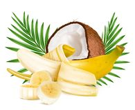 Open ripe  banana  and coconut Royalty Free Stock Image